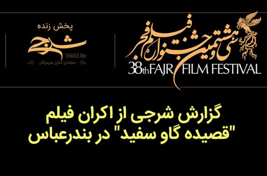 """گزارش شرجی از اکران فیلم """"قصیده گاو سفید"""" در بندرعباس"""
